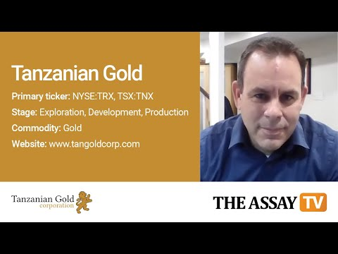 The Assay TV: Stephen Mullowney, Chief Executive Officer, Tanzanian Gold Corp. (TSX:TNX, NYSE:TRX)