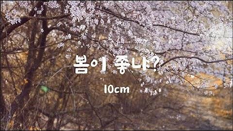 봄이 좋냐 뮤직비디오