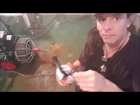 Unclogging Main Drain Line in your Home and Save Hundreds of Dollars Doing it Yourself