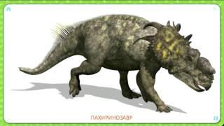 Карточки Домана  Развивающие мультики для самых маленьких  Доисторический мир