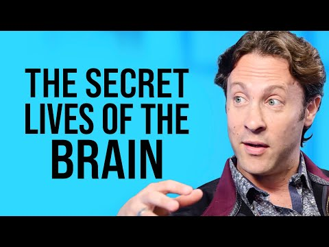 The New Structure of Infinite Possibility  | David Eagleman