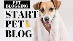 How To Start A Pet Blog | Pet Blogging Tutorial