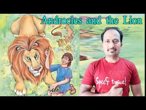 Androcles and the Lion : Std. 8th : NEW SYLLABUS : THIRD LANGUAGE