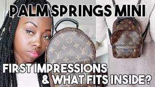 Louis Vuitton Palm Springs Mini My World Tour! | First Impressions + What Fits Inside!
