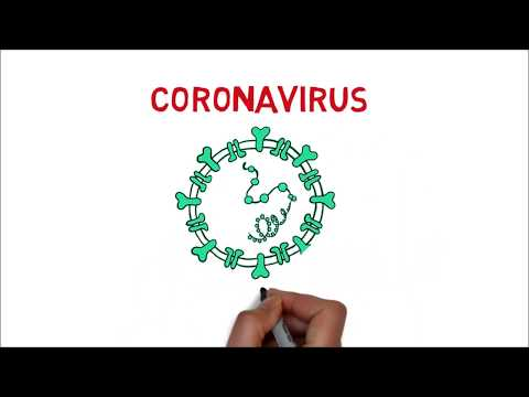 Coronavirus (Origen, Síntomas,