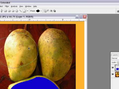 Learn about Tools in Photoshop CS3