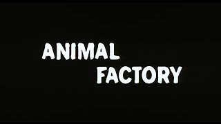 Animal Factory - Bande Annonce (VOST)