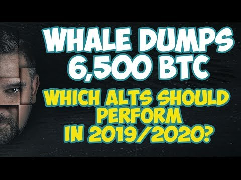 Whale Dumps 6,500 Bitcoin Which Alt Coins Should Perform In 2019