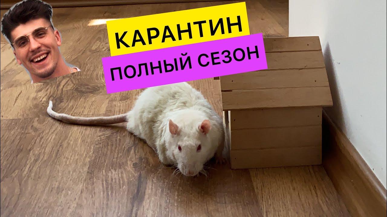 Карантин с ПАЦЮКОМ / Первый сезон целиком