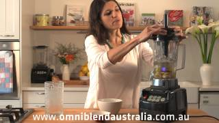 Omniblend Lime Aid Frappé Recipe   Power Blender