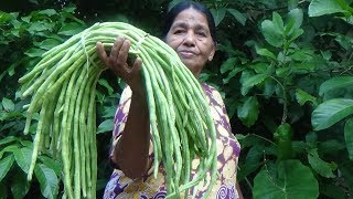 Village Foods ❤ cooking Long Beans in my Village by my Mom