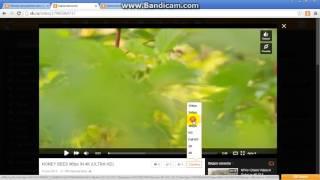 Скачать видео с одноклассников Oktools 2.9