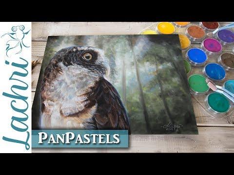 PanPastel Review &