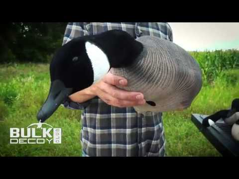 The Cheapest Full Body Canada Goose Decoys | Bulk Decoy Club