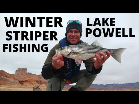 Fishing Lake Powell, Winter Striper Fishing