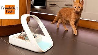 5 Incredible Inventions For Your Cat #2 ✔