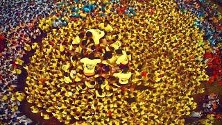 One of India's Most Dangerous Festivals... Dahi Handi