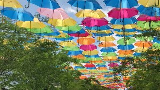 Umbrela SKY - Coral Gables - Miami