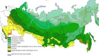 степная полоса России