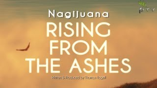 Nagijuana - Rising From The Ashes (Alexey Ryasnyansky Remix) |Pulsar Recordings|