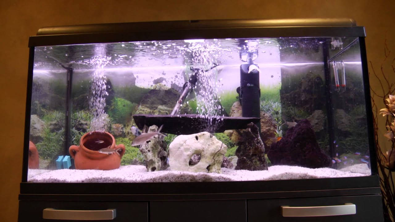 Aquarium fish tank for sale - Fish Tanks For Sale