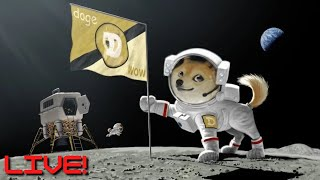 🔴[LIVE] MARKET CLOSE: AMC, TSLA, WĶHS & MORE 💎🙌 || DOGE ARMY: CRYPTO BOUNCING 🚀🚀🚀
