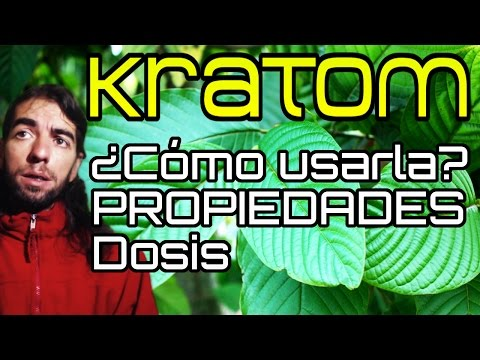 Que Es El Kratom Purchase