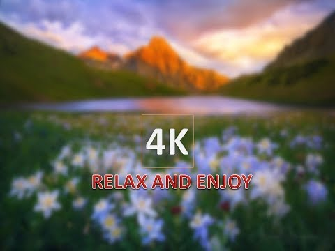 #4k Spring Video Nature Relaxation*   its realy New 4k