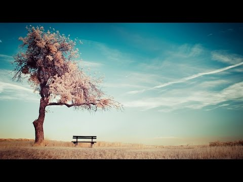45 Minutes of Tranquility: Music to feed the soul