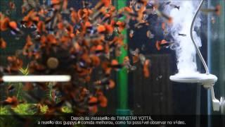 TWINSTAR Yotta - O melhor esterilizador de aquário do mundo!