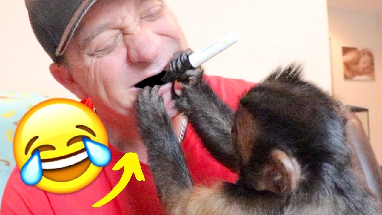 Pet Monkey Colors My Teeth Black... (FUNNY)