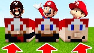 NE CHOISISSEZ PAS LE MAUVAIS MARIO SUR MINECRAFT !! Bébé Mario , Mario 3H00 Du Matin , Mario