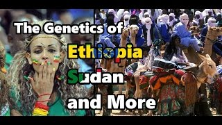 The Genetics of the Horn of Africa, Sudan, and the Sahel