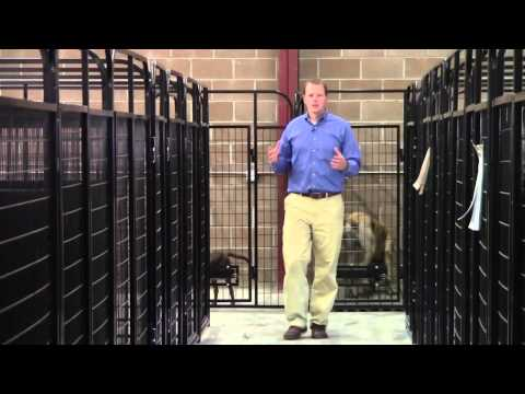 Make Your Dog Kennel Much Larger For Cheap