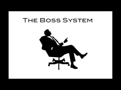 The Boss System (Leveraging Business Credit)