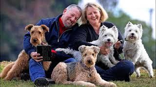 Что такое совладение собакой — что это? Плюсы и минусы.
