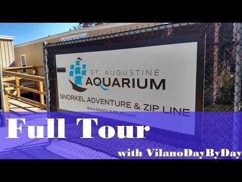St Augustine Aquarium - FULL TOUR