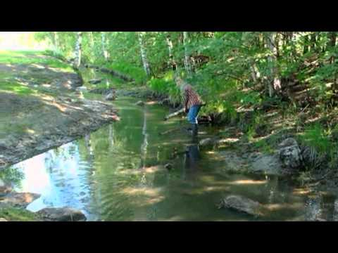Restoring an Urban Brook by Voluntary Work