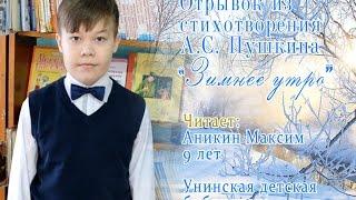 Страна читающая — Максим Аникин читает произведение «Зимнее утро» А. С. Пушкина