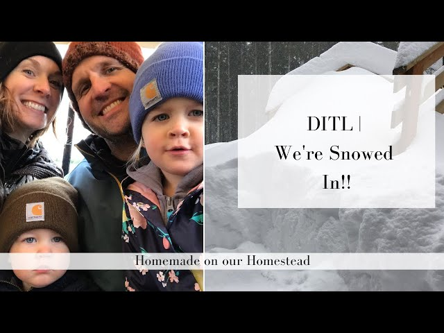 Day In The Life | Snowed In on our Homestead | TINY HOUSE LIVING