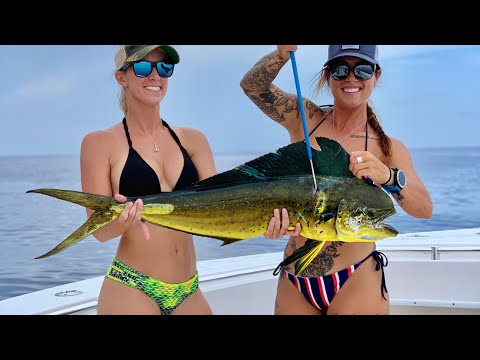 Mahi & Tuna FISHING With Brittany OFFSHORE