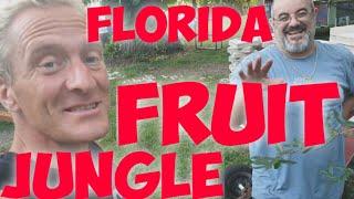 Florida FRUIT JUNGLE Organic Wild Food Couchsurfer Dan is eating the backyard!! #297
