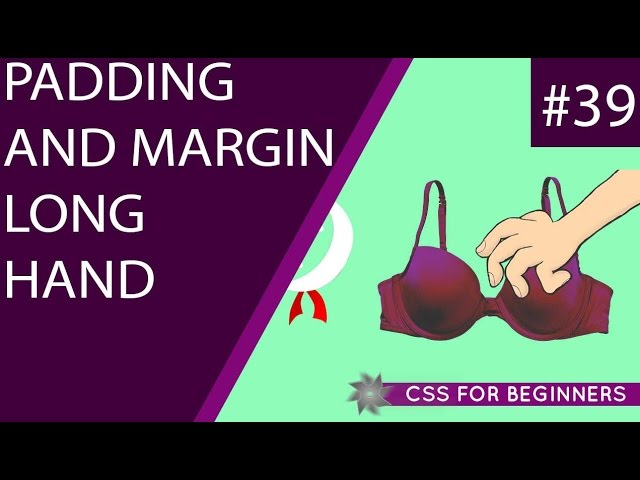 CSS Tutorial For Beginners 39 - Padding & Margin Long-hand