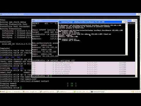 DNS Server Setup for the Environment