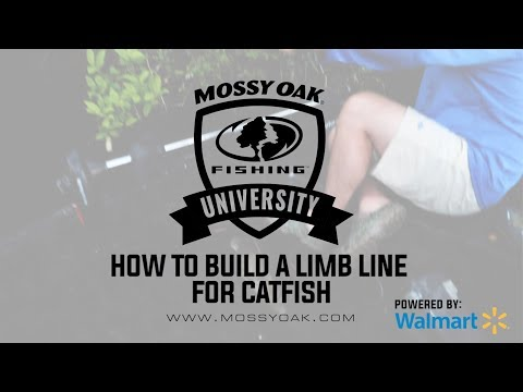 How To Make And Rig Limb Lines For Giant Catfish