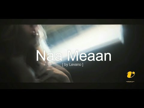 Naa Meaan FT Cassper Nyovesta [Unofficial Music Video]