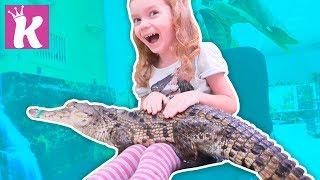 ПАРК КРОКОДИЛОВ ГЛАДИМ ЖИВОТНЫХ Развлекательный Зоопарк для всей семьи