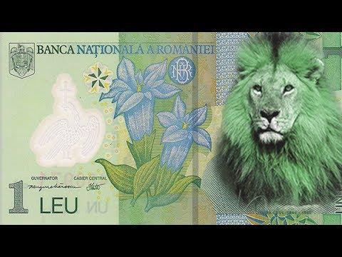 De ce se cheamă leul LEU şi nu LUP?