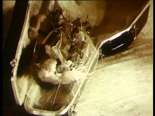 Александр Новиков — ГОП-СТОП-ШОУ Концерт в Московском Театре Эстрады 1991 г.