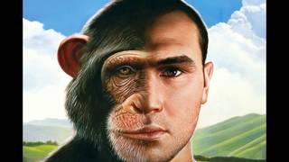 HUMANS vs ANIMALS (Vegan) DNA 75-99% Similar Suffer Same Bone Teeth Organs Brain Biology Test Rights